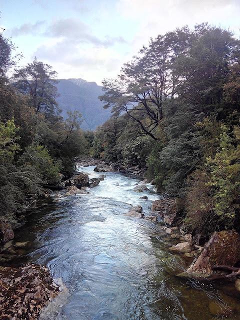 Estero Gonzalo, Camping Parque Pumalín, Chile