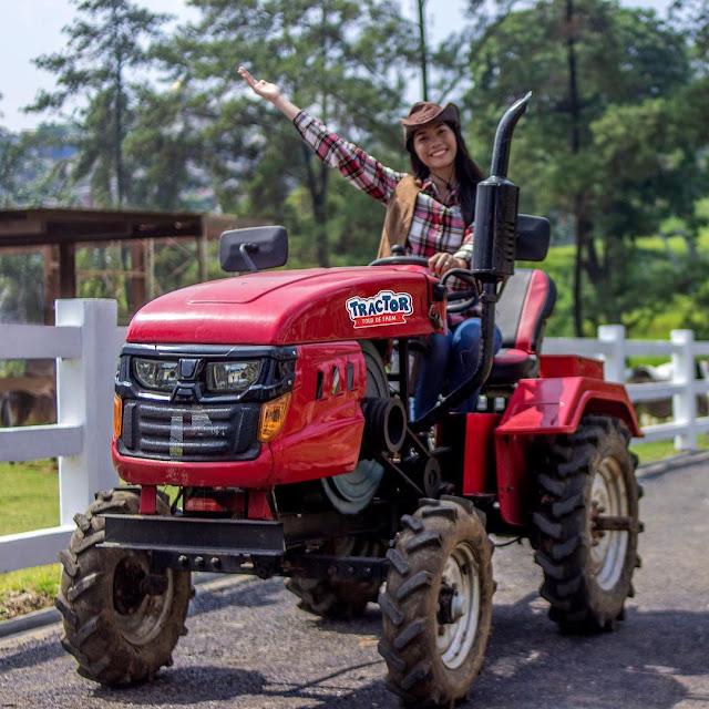Wahana di Cimory Dairyland Puncak Bogor