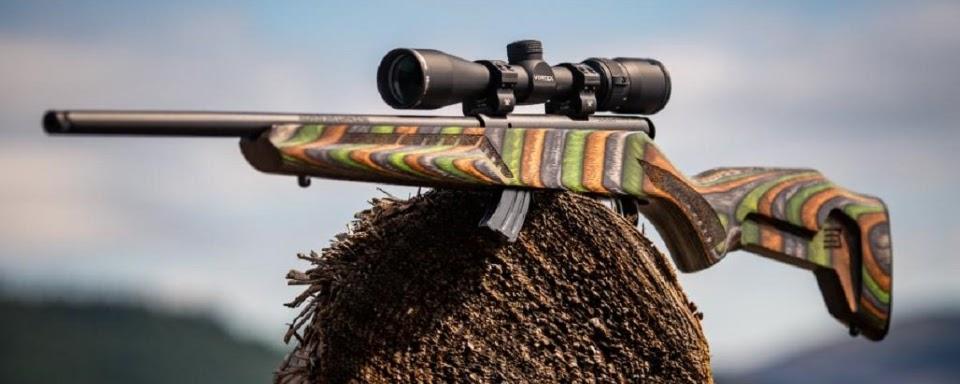 Великі можливості малих калібрів: 22 LR, 22 WMR, 17 HMR