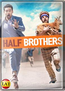 Medios Hermanos (2020) DVDRIP LATINO