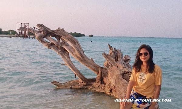 konsumsi paket wisata private trip pulau pari 3 hari 2 malam pulau seribu