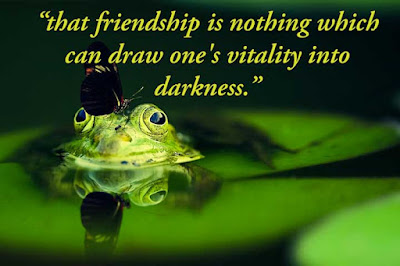 Friendship quotes in imsges