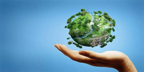 факт о тропическом лесе оберегание природы