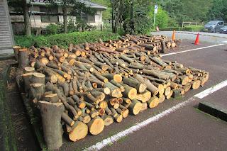 【お知らせ】公園管理で伐採した丸太を無償で譲渡します【第二弾】9/23現在