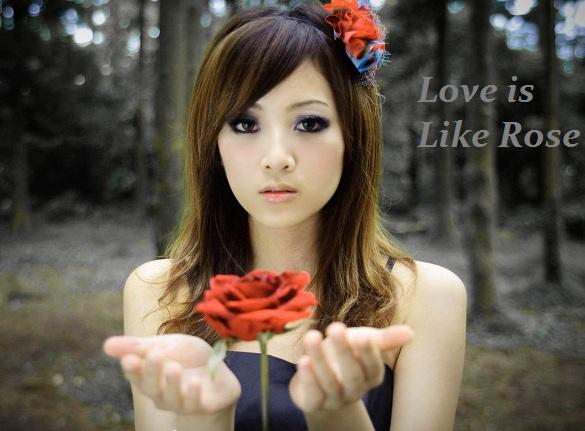 Rose day Love Sad Whatsapp Status DP