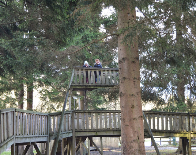 Hamsterley Forest Adventure Play Area