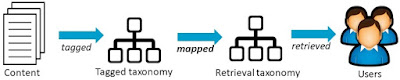 Diagram of one-way taxonomy mapping