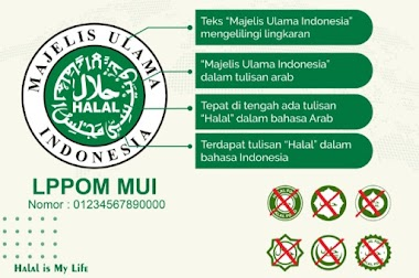 MUI Tak Keberatan Sertifikasi Halal Diambil Alih Pemerintah, Asal...
