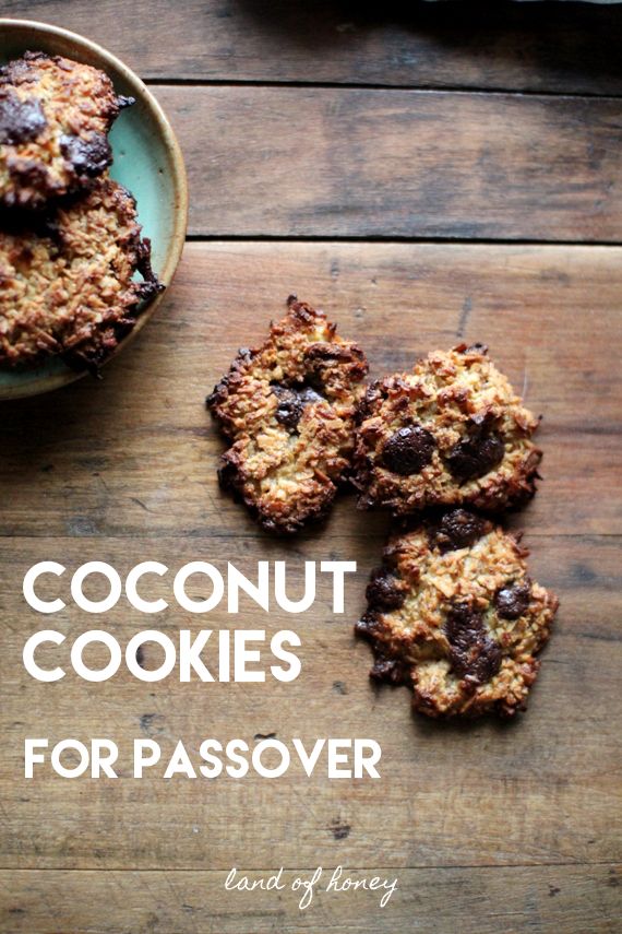 Kosher for Passover Coconut Cookies - GAPS and Paleo approved | Land of Honey