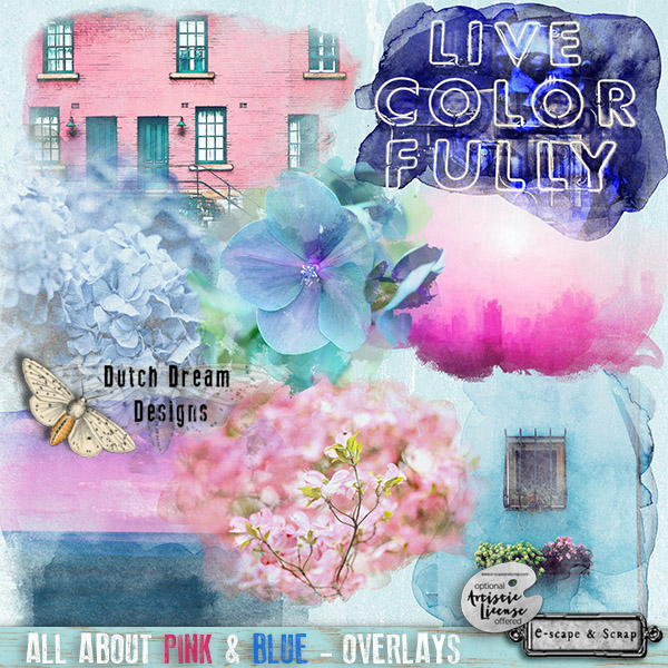 All About Pink & Blue Overlays
