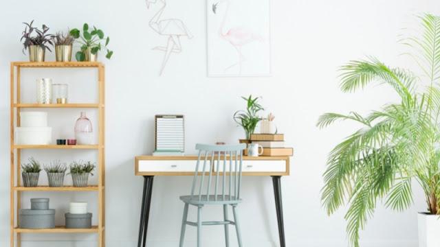 nuansa hijau rumah minimalis