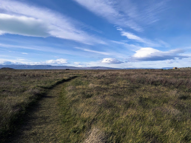 Birding Patagonia: Path through the grass and fluffy clouds at Laguna Nimez Nature Reserve in El Calafate Argentina
