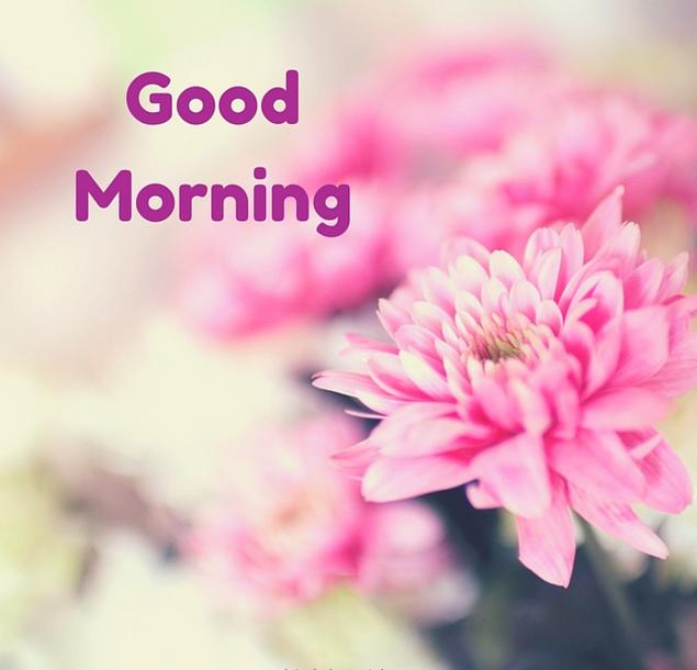 Whatsapp Good Morning Love Images: Whatsapp Good Morning 2018