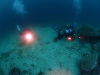 2021年4月9日の柏島ダイビング