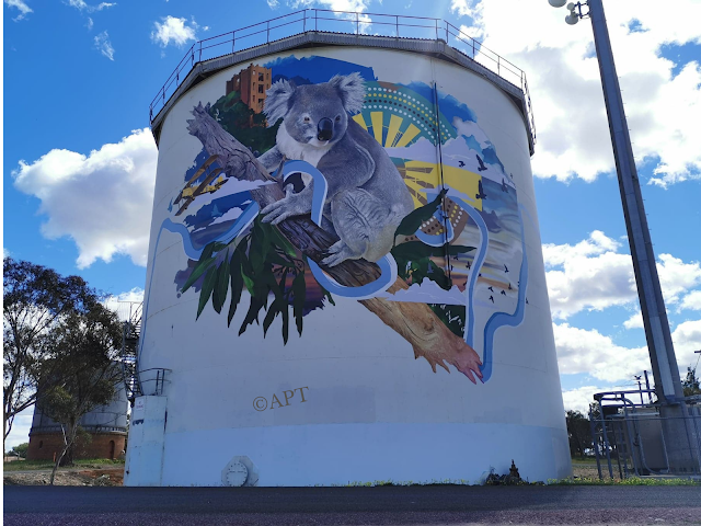 Narrandera Silo Art   Painted Water Tank by Apparition Media