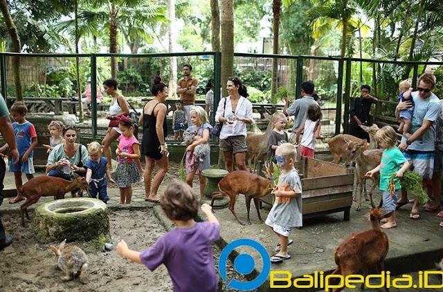 Ticket Masuk Wisata Bali Zoo Bali