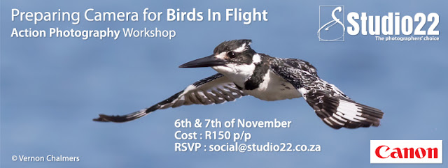 Preparing your Camera for Birds in Flight Workshop Cape Town by Vernon Chalmers