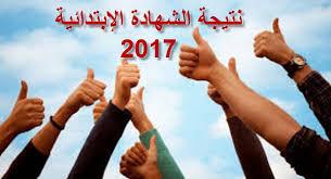 نتيجة الشهادة الابتدائية محافظة الدقهلية 2017