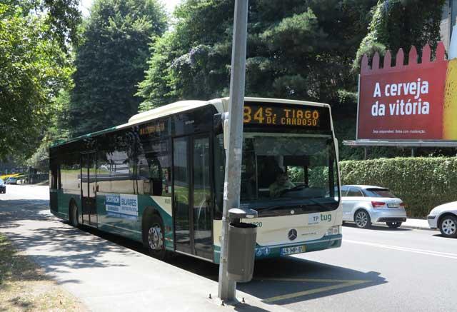 84 Bus