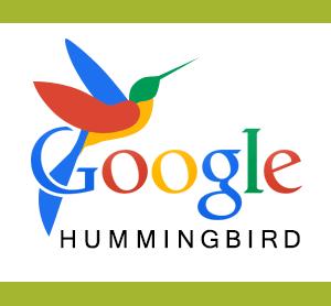 google-hummingbird,www.frankydaniel.com