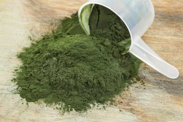 Chlorella là gì ? Tác dụng và liều lượng khi sử dụng
