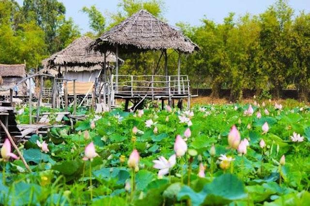 Khu du lich sinh thai Dong Sen Thap Muoi - 0909381581 ClownVietNam