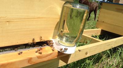 Χρήσιμα για την τροφοδοσία των μελισσιών