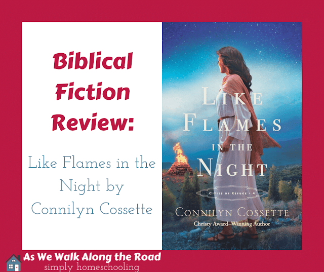 Biblical fiction review