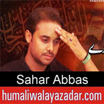 https://humaliwalaazadar.blogspot.com/2019/08/sahar-abbas-nohay-2020.html
