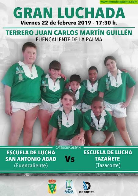 Gran Luchada en Fuencaliente: Escuela de Lucha San Antonio Abad Vs Escuela de Lucha Tazañete