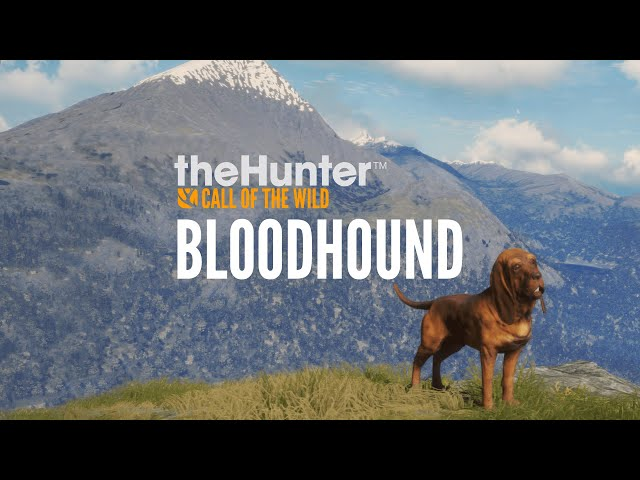 تحميل لعبة محاكي الصياد TheHunter Call of the Wild Bloodhound للكمبيوتر
