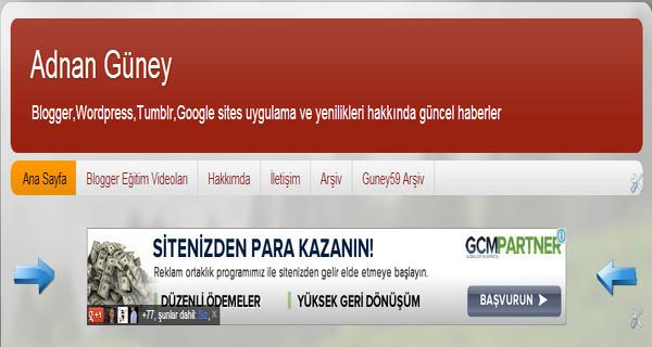 Google Adsense reklam ayarları