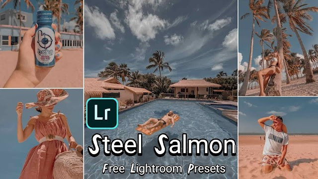 Steel Blue & Orange Salmon Presets Free Download