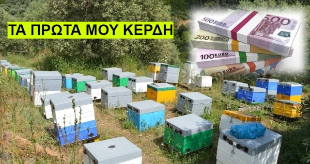 Τα πρώτα μου χρήματα από τη Μελισσοκομία