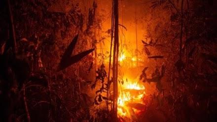 Πυρκαγιές στον Αμαζόνιο κατακαίνε δάση