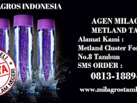 Milagros Cikarang SMS Order  0813-1889-2488