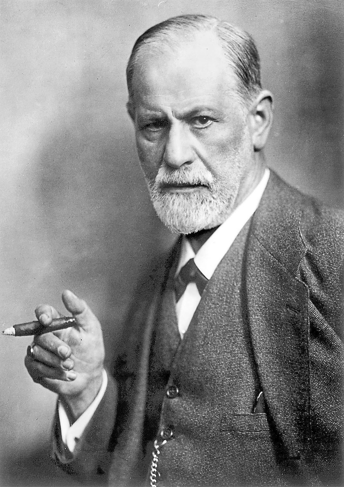 the flaxen saxon chronicles sigmund freud brief notes