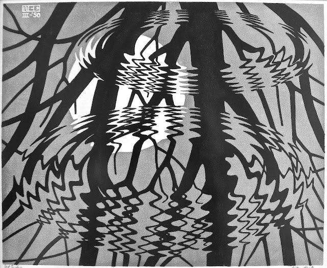 a 1950 M.C. Escher print, water ripples