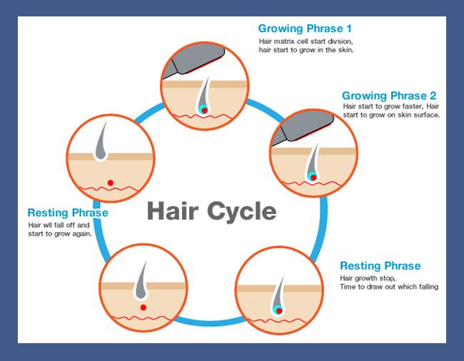 How to Grow Hair on Your Head