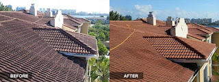 Roof cleaning service Orlando