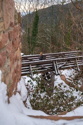 Blättersbergweg Rhodt  Winterwandern Südliche Weinstraße  Rietburg - Villa Ludwigshöhe - Edenkoben 15