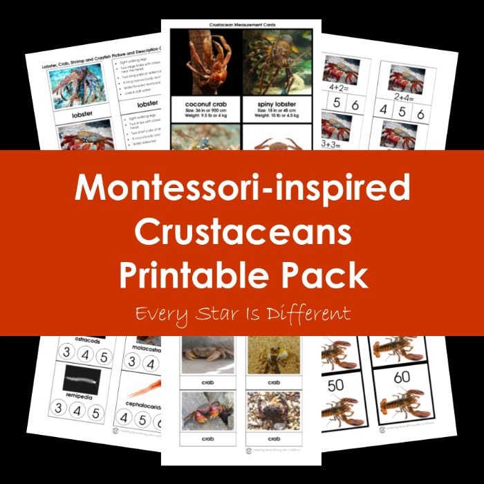 Montessori-inspired Crustaceans Printable Pack Bundle