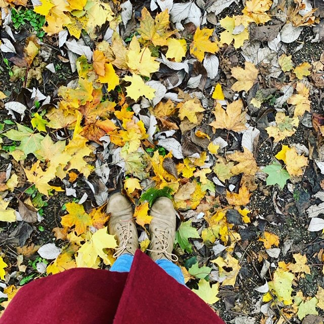Shot of women's legs and boots, amongst autumn leaves