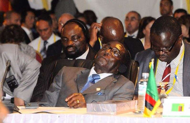 Mugabe sleeping at Ghana @ 60 goes viral on social media