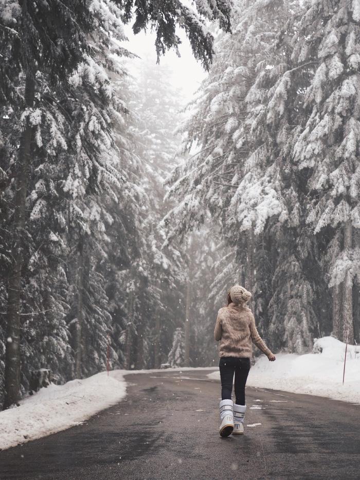 Promenade hivernale dans le Pilat enneigé