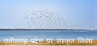 छत्तीसगढ प्रदेश पर संस्कृत निबंध - Chhattisgarh Essay in Sanskrit