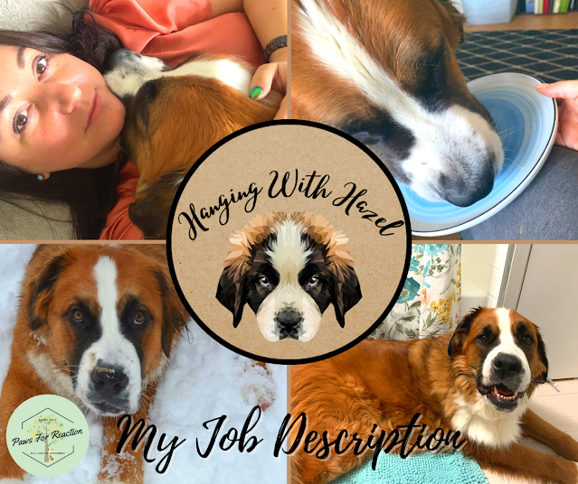 Hanging With Hazel: A successful working (from home) dog's job description