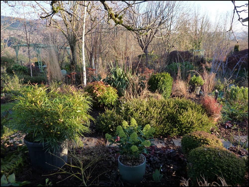 Le jardin des 4 coins: Winter garden : Jardin du Mayet