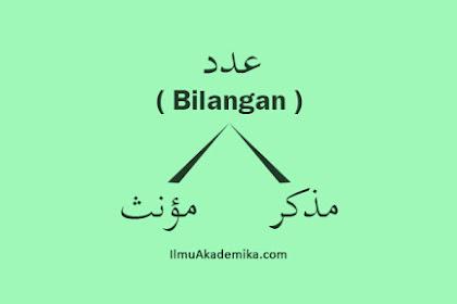 Angka Arab Mudzakkar dan Muannats