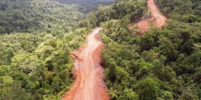 Tokoh Papua: Pemerintah Jokowi Bohong Besar Soal Insfrastruktur Jalan Di Papua